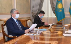 The President receives Chairman of Agency for Civil Service Affairs Anar Zhailganova